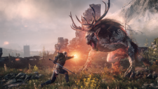 The Witcher 3: Wild Hunt - Game of the Year Edition Screenshot 4