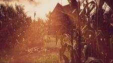 Maize Screenshot 8