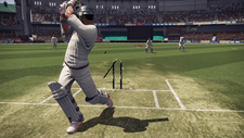 Don Bradman Cricket Screenshot 7