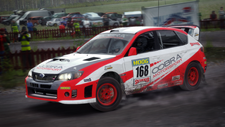 DiRT Rally Screenshot 2