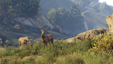 Grand Theft Auto V (JP) Screenshot 8