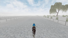 Horse Racing 2016 Screenshot 5