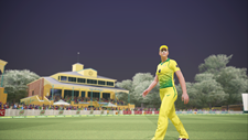 Ashes Cricket Screenshot 7