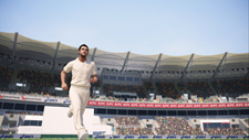 Ashes Cricket Screenshot 8
