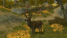 Cabela's Big Game Hunter 2008 Screenshot 8