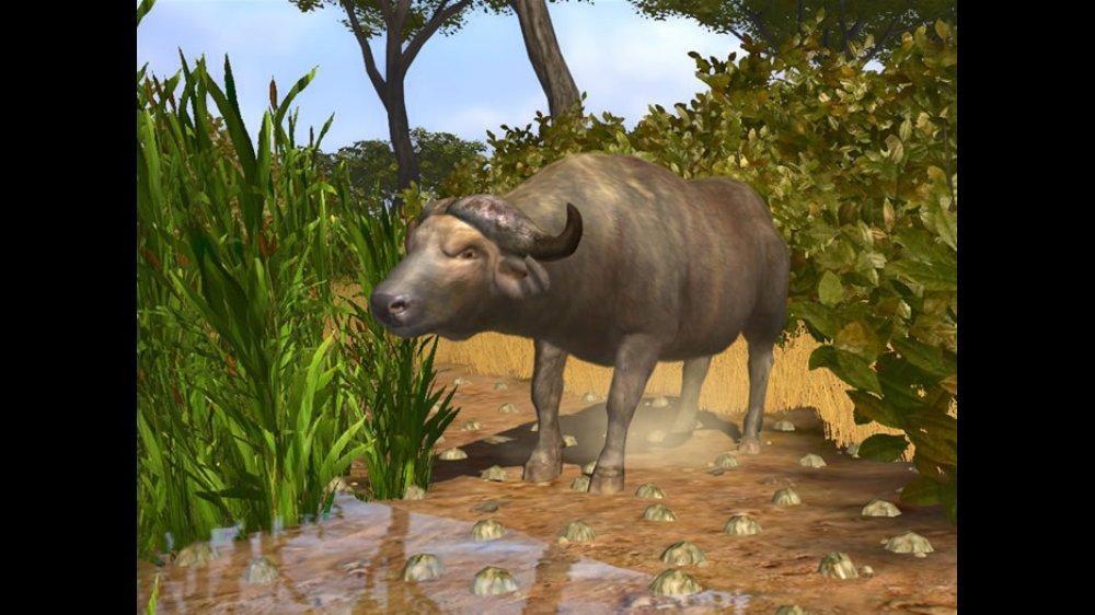 cabela's big game hunter 2008 free  pc