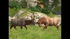 Cabela's Big Game Hunter 2008 Screenshot 3