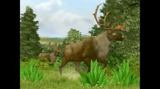 Cabela's Big Game Hunter 2008 Screenshot 2