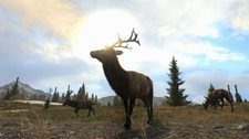Cabela's Big Game Hunter: Pro Hunts Screenshot 3