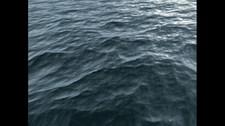 Deadliest Catch: Alaskan Storm Screenshot 2