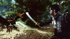 Risen 2: Dark Waters Screenshot 1