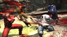 Ninja Gaiden III Screenshot 3