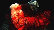 Ninja Gaiden III Screenshot 8
