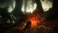 The Witcher 2: Assassins of Kings Screenshot 4