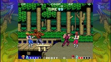 Double Dragon Screenshot 7