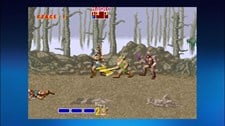 Golden Axe Screenshot 3