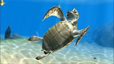 Sealife Safari Screenshot 1
