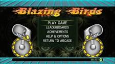 Blazing Birds Screenshot 1