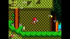 Sonic & Knuckles Screenshot 5