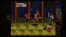 SEGA Vintage Collection: Golden Axe Screenshot 3
