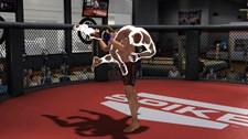 Bellator: MMA Onslaught Screenshot 3