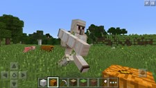 Minecraft (WP) Screenshot 5