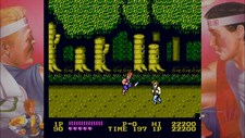 DOUBLE DRAGON Screenshot 7
