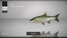 Fishing Planet Screenshot 8