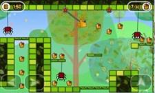 Little Acorns (WP) Screenshot 6