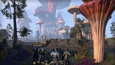 The Elder Scrolls Online: Tamriel Unlimited Screenshot 3