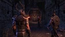 The Elder Scrolls Online: Tamriel Unlimited Screenshot 2