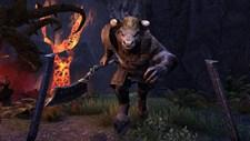 The Elder Scrolls Online: Tamriel Unlimited Screenshot 6
