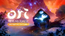 Ori and the Blind Forest: Definitive Edition (Nintendo Switch) Screenshot 2
