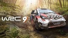WRC 9 Screenshot 1