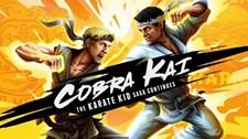 Cobra Kai: The Karate Kid Saga Continues Screenshot 1