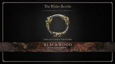 The Elder Scrolls Online: Tamriel Unlimited Screenshot 1