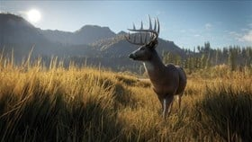 theHunter: Call of the Wild March Update Accompanies First DLC